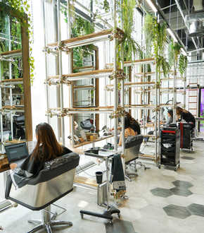 Walking on Sunshine Hair Salon | Orchard Central | Best Colour and